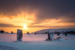 The Hurlers (Timothy Gilbert) Tags: hurlers panasonic1235mmf28x thehurlers bodminmoor minions rocks gx8 panasonic sunrise luminar2018 stonecircle cornwall lumix snow
