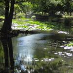 Queenstown Gardens thumbnail