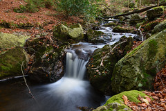Waterfall (gillesfrancotte) Tags: 2017 amblève ardennes autumn aywaille chefna d800 nikon november outdoor quarreux stoumont automne cascade creek eau fall landscape longexposure nature novembre stream torrent water waterfall waterscape wallonie belgique be nikonpassion