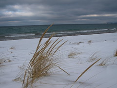 Dune Climb Trail (friendsofsleepingbear) Tags: duneclimbtrail dunestrail trail dunes winter snow dunegrass lakemichigan