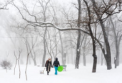 winter (photoksenia) Tags: d810 nikon winter odessa snow tree street park weather cold