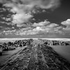 Seaside (Christophe Rusak) Tags: belgique seaside shore briselames rock longueexposition long vagues vague pierre rocher ciel noiretblanc monochrome nuages sombre calme sky clouds