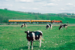 4116_05_06 (11)_crop_clean (railfanbear1) Tags: railroad train locomotive bkrr alco