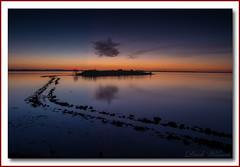 Receding Tide (Deek Wilson) Tags: landscape hightide islandhill newtownards sunrise pathway bluehour strangfordlough northernireland ardspeninsula