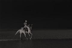 Night Rider ... (*Lie ... on & off ... too busy !) Tags: oostduinkerkebad vlaamsewestkust westvlaanderen belgië belgium zee sseaside mer meer nacht nuit night paarden horses chevaux pferde meeuwen mouettes möwe seagulls nikon nikkor nikond90 nikkor18200mm