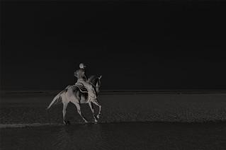 Night Rider ...