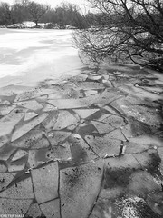 Black And White - Water And Ice (peterphotographic) Tags: p3020257sefexedwm blackandwhitewaterandice olympus tg5 tough ©peterhall hollowponds walthamstow wanstead snaresbrook eastlondon eppingforest london england uk water ice freeze frozen cold winter lake pond nik silverefexpro2 blackandwhite blackwhitephotos monochrome