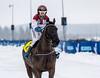 IMG_1037 (Juha Hartikainen) Tags: lempäälä hevonen ravit pirkanmaa finland fi