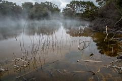 Rotorua - Kuirau Park (simone_a13) Tags: newzealand rotorua geothermal steam reflection