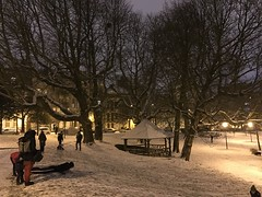 De la luge dans le parc aux rares occasions (Flikkersteph -5,000,000 views ,thank you!) Tags: night urbanlight winter snow trees park white lighteffect nature dark riga schaerbeek brussels belgium