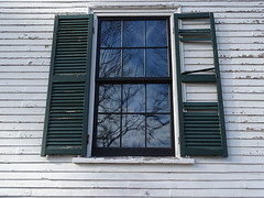 Damaged, Reflecting Growth (miranda.piscopo) Tags: window broken reflection branches tree old shutters green building pane glass sky