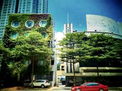 Flora by Crossroads Hotel No. 66, Jalan Ampang, Kuala Lumpur, 50450 Kuala Lumpur, Wilayah Persekutuan Kuala Lumpur 03-2022 4020 https://goo.gl/maps/h7iMby2auzG2  #travel #holiday #trip #traveling #buildling #Asian #Malaysia #KualaLumpur #travelMalaysia #h