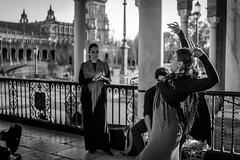 Flamenco (7) (xytse13) Tags: spain espana spanien sevilla andalucia andalusien canon blackwhite flamenco dance dancer tänzer tanz