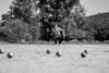 In Focus (Tom#201) Tags: lot frankreich urlaub sport mono midipyrénées boule smileonsaturday street roundandround france holidays processing pétangue sw sports blackwhite bw monochrome schwarzweiss