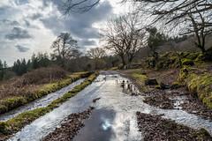 Flooded road alongside the Devonport Leat - NK2_5189 (Jean Fry) Tags: burratorarea dartmoor dartmoornationalpark devon devonportleat englanduk uk water westcountry floodedroads leats reflections wetroads