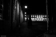 L'entrée du Château (jpto_55) Tags: château châteaustanislasàcommercy commercy meuse france xe1 fuji fujifilm voigtlander15mmf45superwideheliarii voigtlanderlens noiretblanc lorraine
