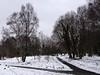 20180318-142844 (aderixon) Tags: naturelandscapehill natureplanttree natureweathersnow transportpath pontypridd midglamorgan walesuk nature snow weather