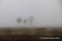 Atmosfera di marzo (Gianni Armano) Tags: nebbia atmosfera di mazo foto gianni armano photo flickr marzo 2018