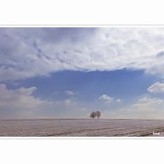 just when you thought it was over (horstmall) Tags: winter hiver snow neige schnee frost kälte fraud eis ice place trees arbres bäume march mars märz frühlingsanfang beginningofspring printempscommence schwäbischealb jurasuabe swabianalps römerstein böhringen strohweiler horstmall landschaft landscape paysage