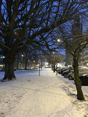 Trottoir près d'un vieux chêne sous la neige (Flikkersteph -5,000,000 views ,thank you!) Tags: night urbanlight winter snow trees park white lighteffect nature dark riga schaerbeek brussels belgium