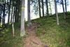 Hiking route - retkeilyreitti (1) (iisalmiregion) Tags: retkeilyreitti hikingtrail polku path luontopolku naturetrail metsä forest reitti vaellus ulkoilu
