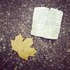 novellen (Sandra Löv) Tags: instagram iphone lönnlöv löv leaf lapp note lostandfound street