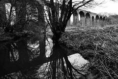 The Old Viaduct (JamieHaugh) Tags: pensford somerset england uk gb greatbritain outdoors sony a6000 viaduct railway trees reflection blackandwhite blackwhite bw monochrome grass tunnel bridge