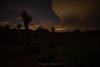 DSC_6772 (captured by bond) Tags: joshuatree nightscape landscape nationalpark capturedbybond california