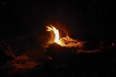 DSCN4215 (David J. Thomas) Tags: mirrorlake blanchardspringsrecreationarea fiftysix mountainview arkansas forestfire proscribedburn flames