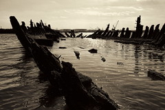 Ripples And Ribs (95wombat) Tags: old abandoned rotted decayed derelict rusty decrepit marinegraveyard arthurkill statenisland newyork bw monochrome sepiatoned