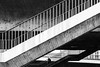 Walking Through The Lines (Abdalis_3k60) Tags: woman street streetphotography lines bridge dusseldorf germany d7500 nikon city blackandwhite stairs