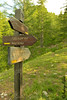 Panneaux (Audrey Abbès Photography ॐ) Tags: alpesdehauteprovence audreyabbès nikon d600 france alpes sud montagne provencealpescôtedazur nature verdure arbre fleur paysage landscape été bois forêt vert panneaux sousbois rochelacroix
