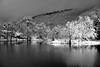 Lac de Bethmale (Michel Seguret Thanks for 11,8 M views !!!) Tags: france pyrenees ariege montagne montana montagna berg moutain hiver invierno inverno winter michelseguret d800 pro arbre tree arbol baum schnee snow neige nieve saison season