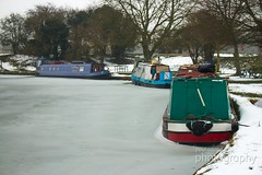IMG_3449 (PaulAdams_Photos) Tags: snow ice canal canalbasin narrowboats boats boat barge barges water frozen snowing bike bicycle bench winter hat robin robinredbreast tree trees bramble bush buds photographer photo photographers sit sitting loch lock camera cameras canon70d sony nikon lens primelens telephotolens bird swan lake wings feathers feather beak bill fly seagull seagulls gull gulls buoy buoys float floats rope wet slippery abandoned hut reeds ducks feed cold branches branch perch perches perched sing birdsong