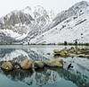 Blackbird Flight, Convict Lake, CA 5-17 (inkknife_2000 (9 million views)) Tags: easternsierranevada california usa landscapes mountains snow snowonmountains dgrahamphoto convictlake mountainlake reflectiononwater rocksinwater blackbird birdinflight