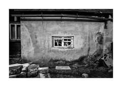 Dog in the window (Jan Dobrovsky) Tags: window countryside leicaq bobík krásnálípa monochrome counrtylife dstreet roma dog blackandwhite outdoor rural village gypsies document