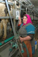 Фартук без грудки (ShyShyny) Tags: доярка фартук клеенка клеенчатый клеенчатыйфартук дойка мокро аппарат milkmaid milking apron rubber wet dairy