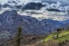 Pico Gorrion (ferpar57) Tags: asturias verde paisaje arbol pico tejo