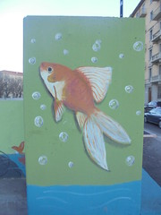 105 (en-ri) Tags: pesce rosso gold fish arancione verde torino wall muro graffiti writing acqua water azzurro bollicine