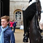 Faces of London: boy and Life Guard horse thumbnail