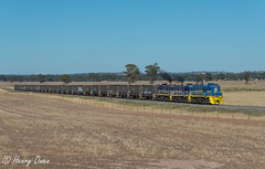 French Park (Henry's Railway Gallery) Tags: 48203 48215 48218 48class alco diesel pacificnational pn graincorp freighttrain graintrain 3926 boreecreek frenchpark