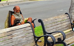 HBM! He prefers his own chair (+1) (peggyhr) Tags: peggyhr benches foldingchair man reading book comfortable dsc06986ab hawaii candid streetphotography hbm level1peaceawards