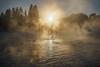 Cold day by river Nidelven (Helena Normark) Tags: fog frost winter nidelven nidelva trondheim sørtrøndelag norway norge sonyalpha7 a7 35mm lensbaby burnside35 lensbabyburnside35 lensbabylove seeinanewway