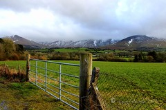 HFF - Explore Ireland (ggcphoto) Tags: fence fencedfriday mountains landscape nature gate ireland thegalteemountains tipperary