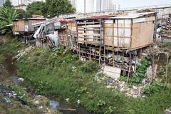 _SSB4619 (Edson Grandisoli. Natureza e mais...) Tags: regiãosudeste palafita córrego urbano favela carente rio água lixo poluição esgoto casa moradia
