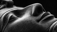 Coloso de Ramses II. Menfis (F. Nestares P.) Tags: ramsesii egipto menfis