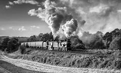 Southern action on the SVR (photofitzp) Tags: railways russhilliercharter svr smoke steam t9 u1
