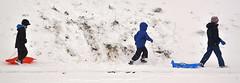 Snow Day (Edinburgh Photography) Tags: snow outdoors winter children playing sledges documentary photojournalism inverleith park nikon d7000