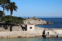 IMG_7574 (mudsharkalex) Tags: california pacificgrove pacificgroveca loverspointpark loverspointbeach