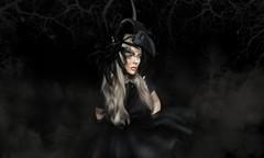 The Crow (к є к ѕ ∂ σ ѕ є) Tags: sl missingyou secondlifestyle bento secondlifeart slfashion fashion gacha maitreya izzie's love avatar 3d lelutka secondlife body face artfree blackwhite artist revoul gizza stealthic pm azoury crow black forest fog